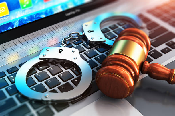 internet sex crimes
